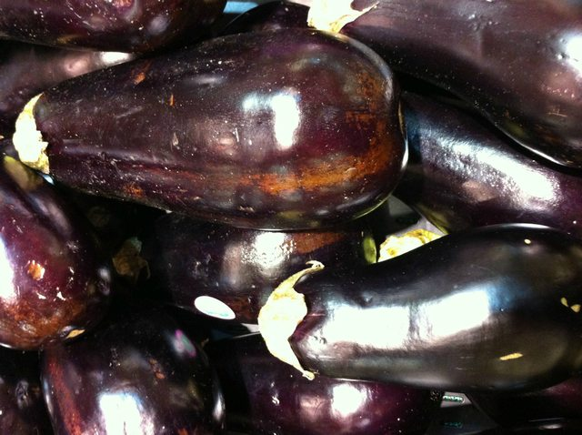 American Eggplants