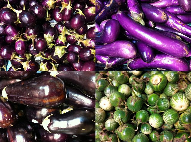 These are ALL Eggplants!