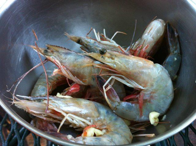Wild Shrimps for Homemade Hibachi