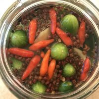 Chinese Spicy Pickled Cucumbers Recipe
