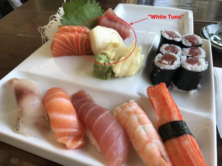 What is White Tuna?