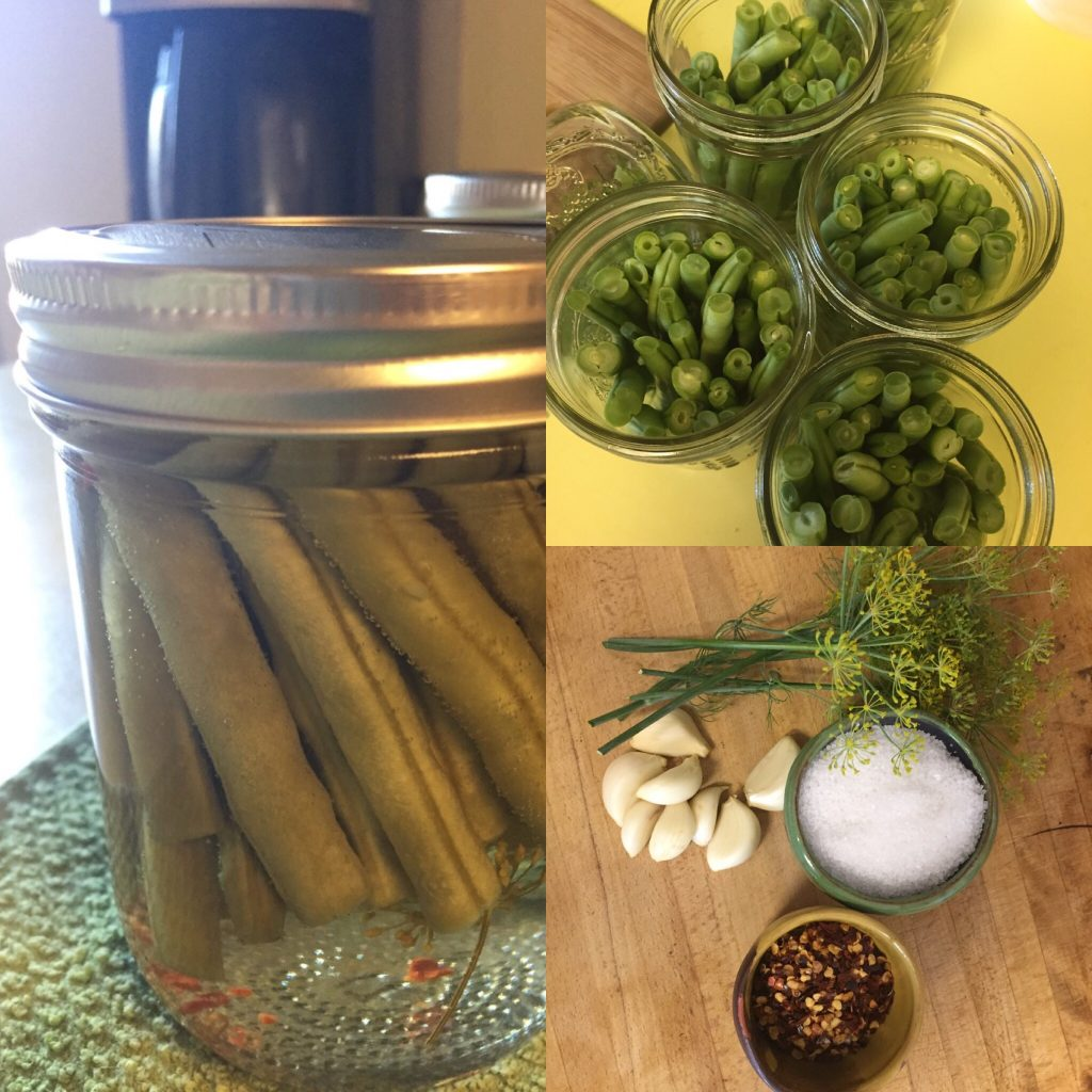 Grandma's Dilly Beans (Pickled Green Beans)