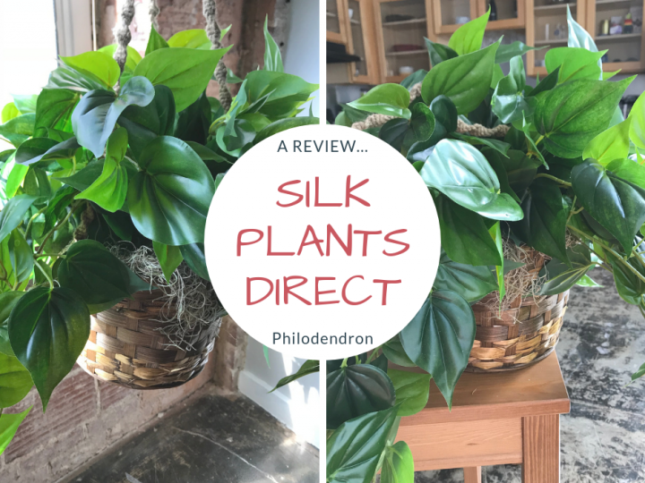 Silk Plants Direct Review