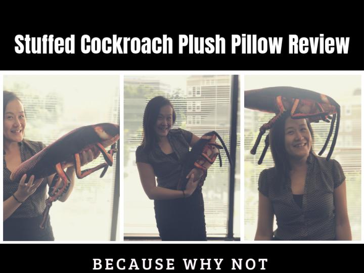Stuffed Cockroach Plush Pillow Review